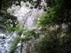 kobe_waterfall_01-723504