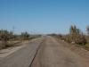 Road to Muynak