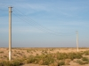 Road to Khiva - Electric Poles