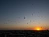 Khiva - Sunset