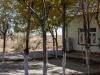 Kyzylkum Desert - Roadside Diner