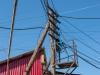 Samarkand - Electric Poles